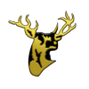 1434623020_ssc-r-stags